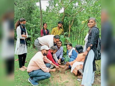 हिंदी दिवस के अवसर पर पर्यावरण प्रेमियों ने लगाए पौधे - Dainik Bhaskar