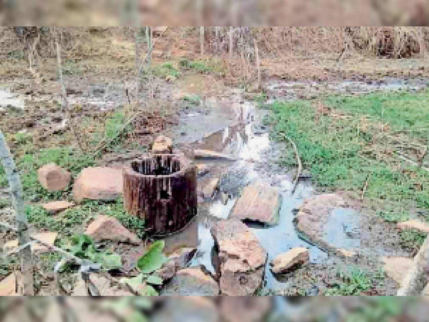 कोड़ेनार के खालेपारा में पेड़ के तने को गाड़कर पानी निकाल रहे लोग। - Dainik Bhaskar