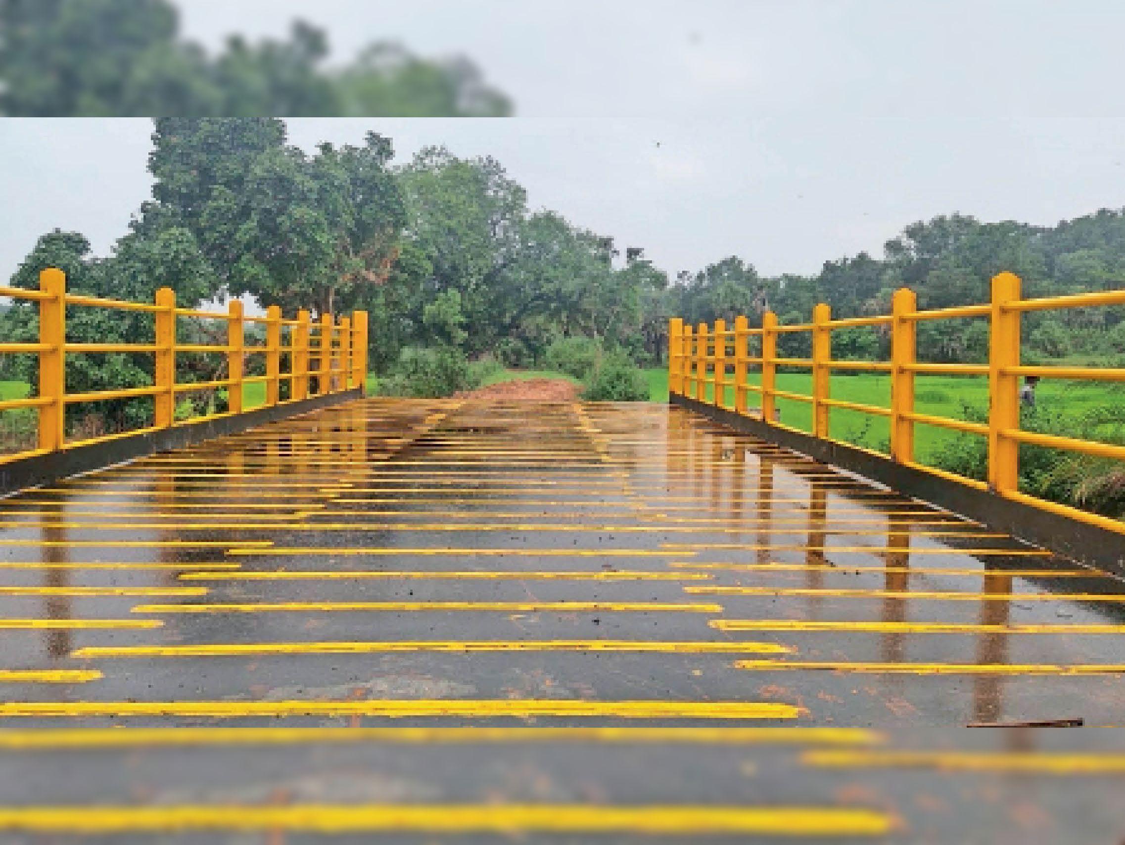 कुआकोंडा में बना स्टील का ब्रिज। - Dainik Bhaskar