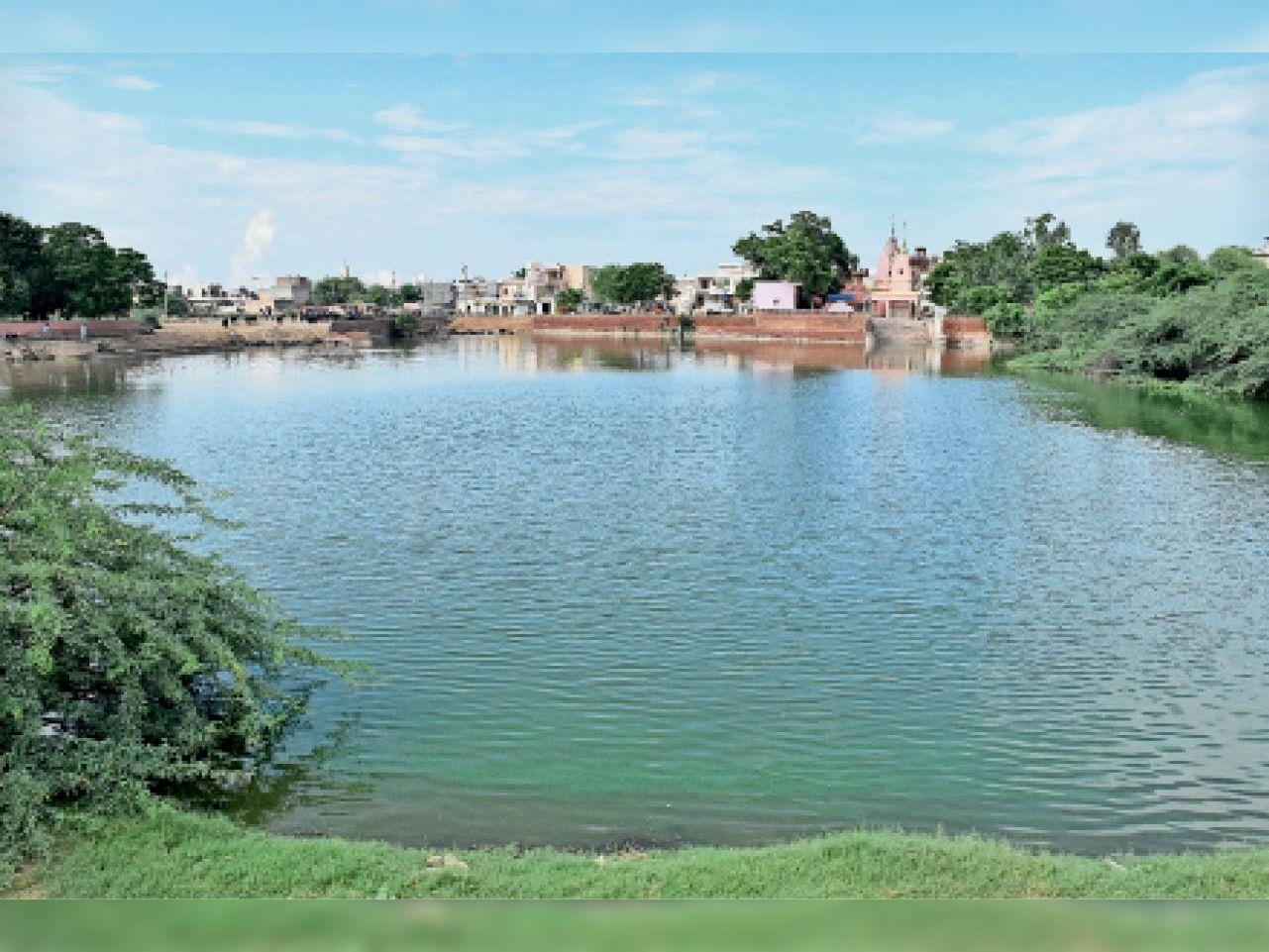 हिसार सातरोड गांव में तालाब। - Dainik Bhaskar