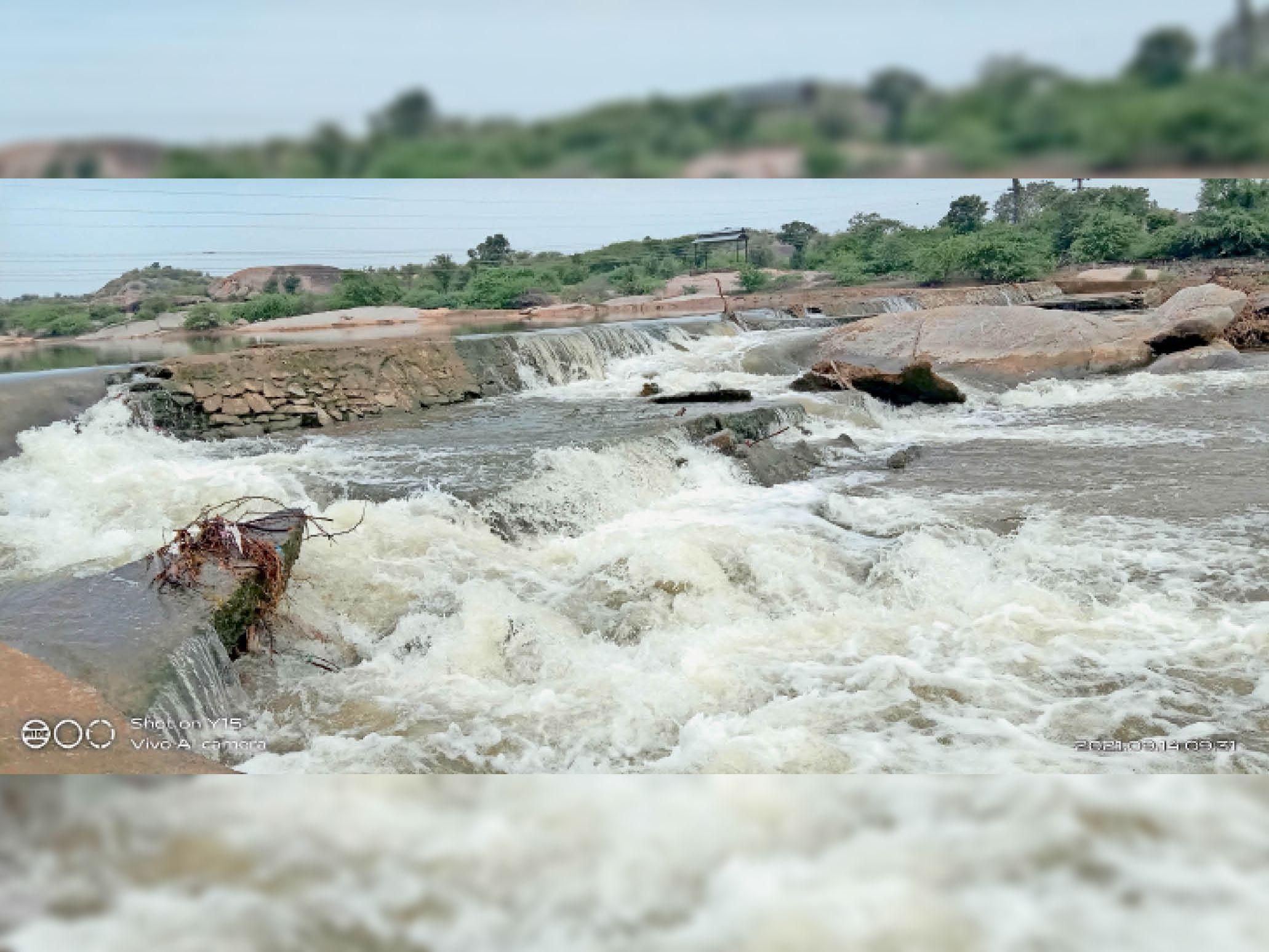 जवाई में 195.60 एमसीएफटी पानी आया, राेजाना 5.5 एमसीएफटी पानी सप्लाई हो रहा। - Dainik Bhaskar