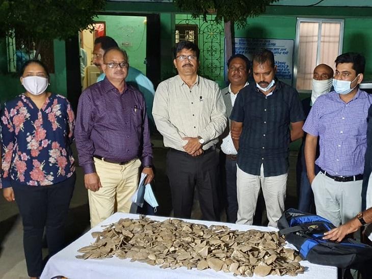 रायपुर में पेंगोलिन खाल का सौदा करते CISF का सब इंस्पेक्टर गिरफ्तार, WCCB जबलपुर की टीम ने पकड़ा|रायपुर,Raipur - Dainik Bhaskar