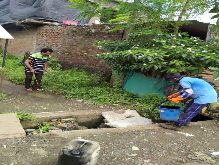 धार कोठी, वंदना नगर, साउथ तुकोगंज के रहवासी चपेट में, दो बच्चे भी शामिल, 16 मकानों में मिला लार्वा पॉजिटिव|इंदौर,Indore - Dainik Bhaskar