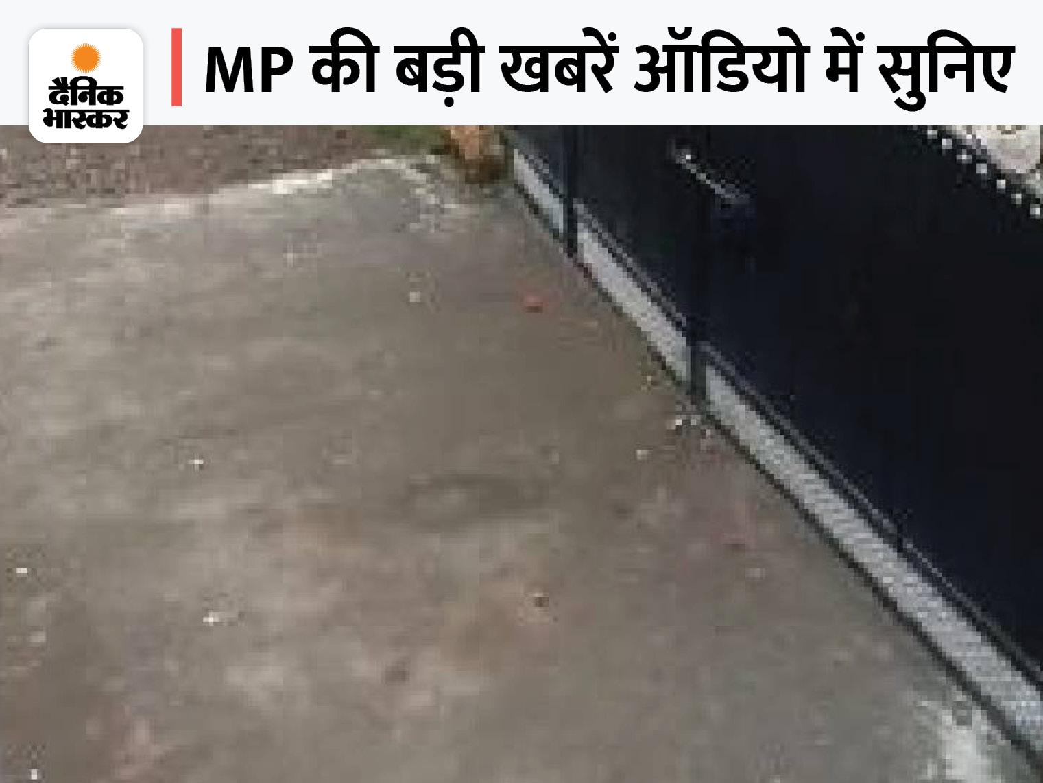 भोपाल में 10वीं की छात्रा से गैंगरेप, सागर में कांग्रेस ने प्रदर्शन कर फेंके अंडे-टमाटर, तवा डैम 7 गेट खोले, इंदौर में MLA और निगम अफसर के बीच विवाद|मध्य प्रदेश,Madhya Pradesh - Dainik Bhaskar