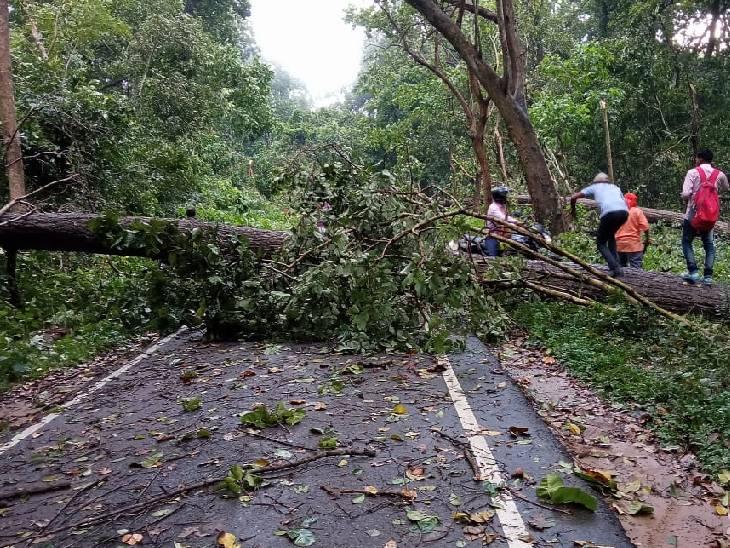 ड़ हटाकर निकलने का प्रयास किया गया लेकिन मार्ग पर गिरने वाले पेड़ों की संख्या अधिक थी।