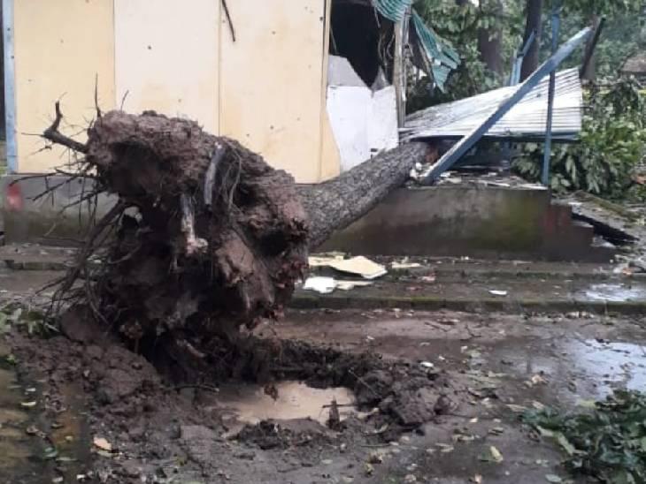 एसएसबी कैम्प पर भी पेड़ गिरे हैं।