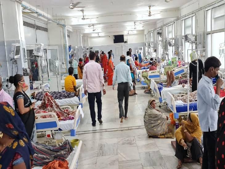 रीवा में अस्पतालों में बढ़ी डेंगू मरीजों की संख्या, 8 माह में 17 और 15 दिन में 12 मरीज आए सामने, 2 लोगों ने इलाज के दौरान तोड़ा दम|रीवा,Rewa - Dainik Bhaskar
