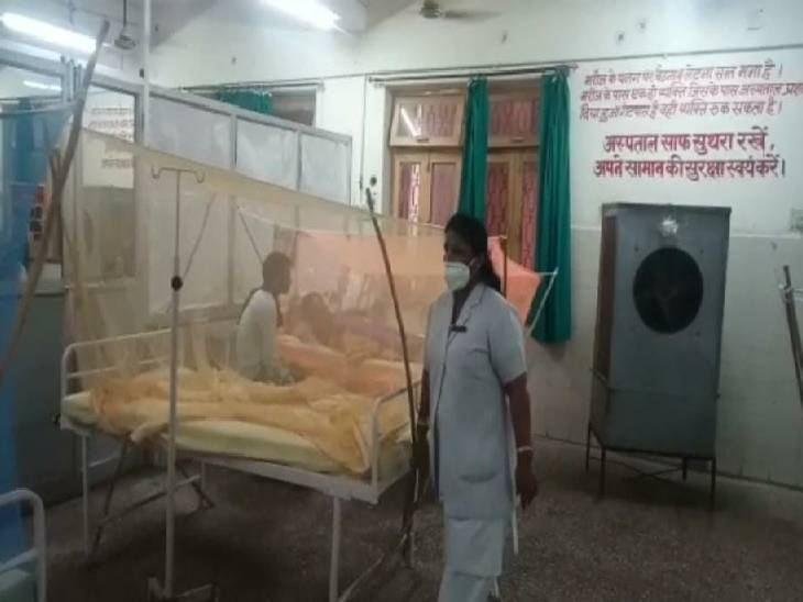 उन्नाव में मिले डेंगू के 30 मरीज - Dainik Bhaskar