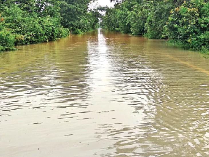 मौसम विभाग का पूर्वानुमान- 24 घंटे में 7.7 मिमी औसत बारिश होगी, लेकिन छत्तीसगढ़ में 31.6 मिमी बरसा पानी। - Dainik Bhaskar