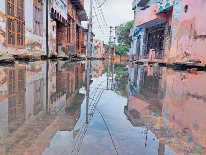 दादरी। जलभराव के कारण मकानों की दीवारों पर चढ़ी नमी। - Dainik Bhaskar