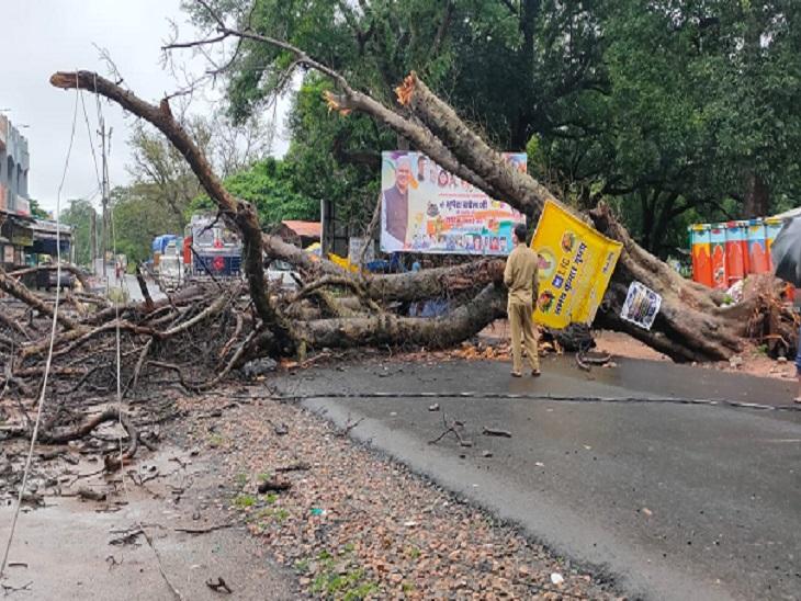 पेंड्रा से मनेन्द्रगढ़ और कोरबा को जाने वाले मार्ग पर पेड़ व बिजली का तार गिरने से आवाजाही बाधित है।
