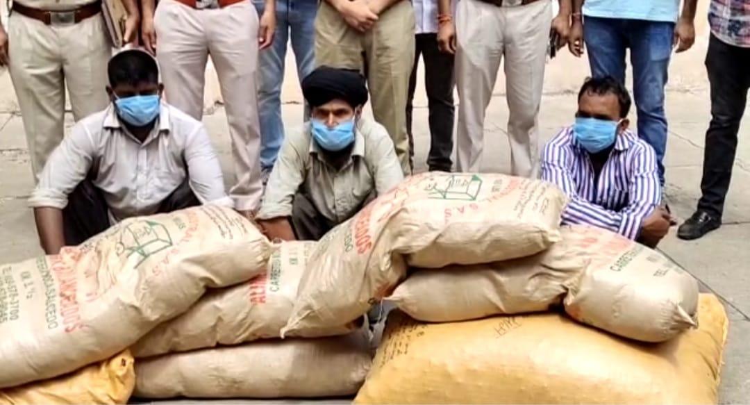 2 ट्रकों में लदे थे 101 किलो 370 ग्राम नशे के कट्टे; दिल्ली पहुंचनी थी खेप, राजस्थान के चित्तौड़गढ़ से लाए थे|रेवाड़ी,Rewari - Dainik Bhaskar