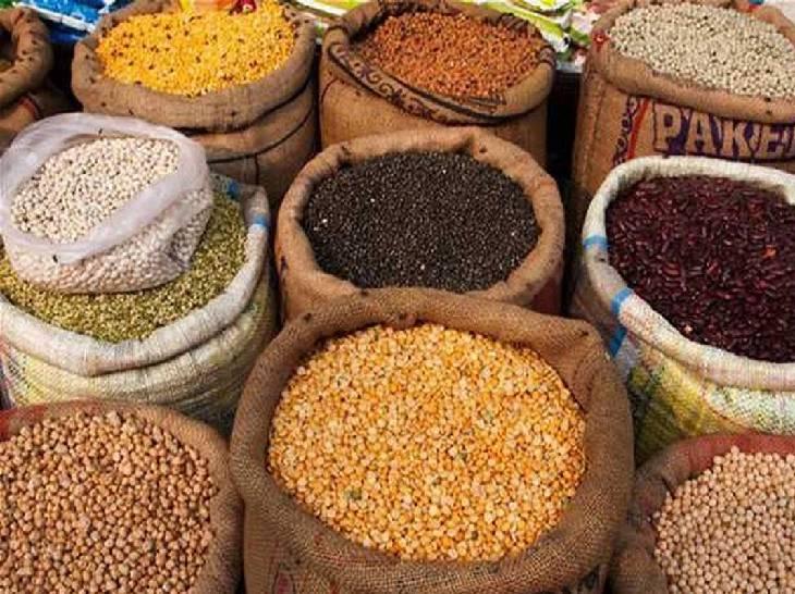 सरकार नया कृषि कानून लाई, लेकिन जमाखोरी रोकने को पुराने कानून का लिया सहारा; यूपी में सर्वाधिक केस हुए|उत्तरप्रदेश,Uttar Pradesh - Dainik Bhaskar