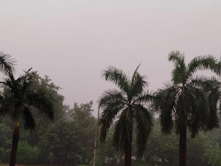 वेस्टर्न डिस्टरबेंस एक्टिव होने के आसार; अगले 24 घंटे में तेज बारिश का अनुमान, अपील- वाहन तेज न चलाएं चंडीगढ़,Chandigarh - Dainik Bhaskar
