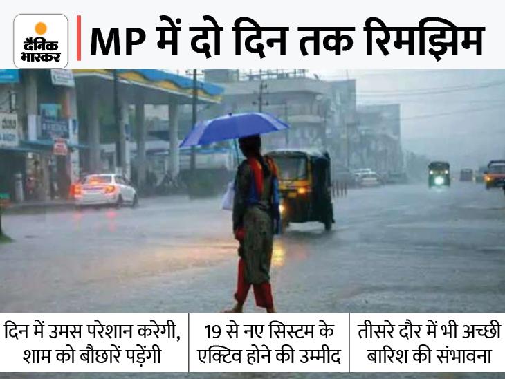 अगले दो दिन तक शाम और रात में हल्की बारिश; 11 जिलों में तेज पानी गिर सकता है, भोपाल में होगी रिमझिम|मध्य प्रदेश,Madhya Pradesh - Dainik Bhaskar