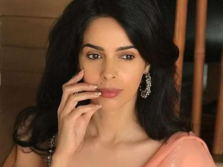 मल्लिका शेरावत ने किया रिया चक्रवर्ती का बचाव बोलीं- एक्टर की गर्लफ्रेंड को उसकी मौत के लिए दोषी ठहराना गलत बॉलीवुड,Bollywood - Dainik Bhaskar