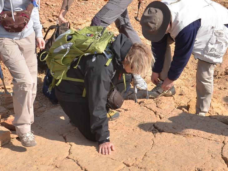 2014 में इंटरनेशनल ग्रुप ऑफ साइंटिस्ट के 20 वैज्ञानिकों ने गांव की पहाड़ियों पर डायनासोर के पंजे के निशान खोजे थे।