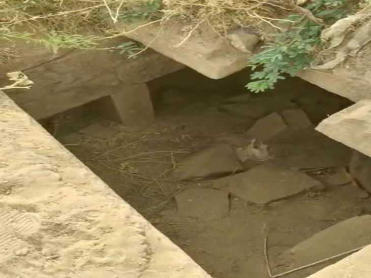 पौधे लगाने के लिए जेसीबी से हो रही थी खुदाई, मिलीं सीढ़ियां और मकान; ग्रामीणों का दावा- यहां 200 साल पहले पालीवाल ब्राह्मणों का गांव था|जैसलमेर,Jaisalmer - Dainik Bhaskar