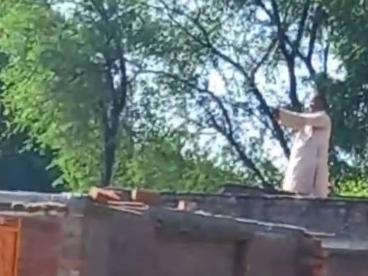 घर के सामने आ गई थी गाय, पुलिस के पहुंचने पर खुद को किया घर में कैद; पुलिस ने कराया सरेंडर|हमीरपुर,Hamirpur - Dainik Bhaskar