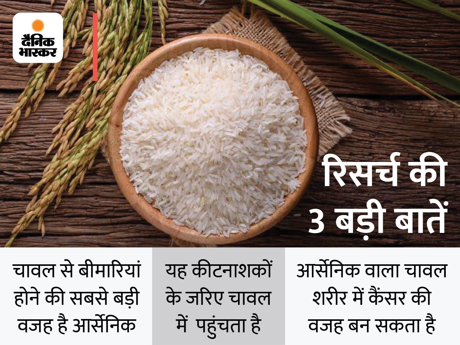 हड़बड़ी में बनाए गए चावल खाने से हो सकता है कैंसर, इंग्लैंड के वैज्ञानिकों की रिसर्च; जानिए कब और कैसे बढ़ता है कैंसर का खतरा|लाइफ & साइंस,Happy Life - Dainik Bhaskar