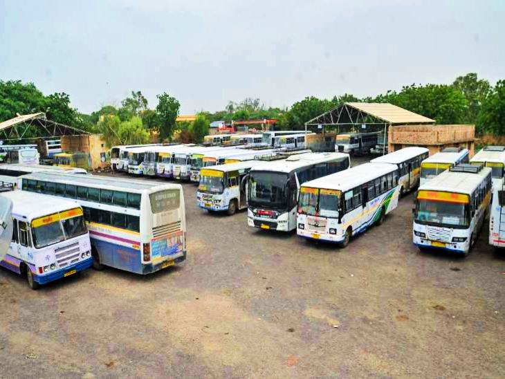रोडवेज के साथ अब निजी और स्कूल बसों का भी होगा संचालन, 20 से 30 सितंबर तक दौड़ेगी 20 हजार बसें|REET 2021,REET 2021 - Dainik Bhaskar