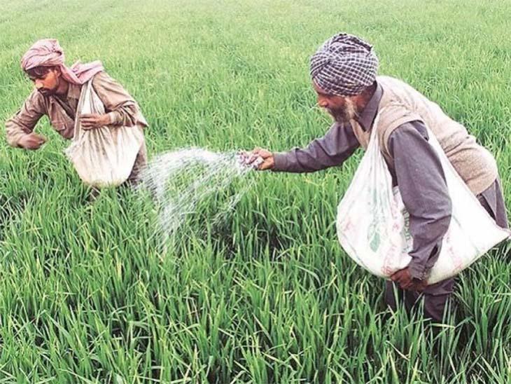 भूमि विकास बैंकों से लोन लेने वाले किसानों को मिलेगा 5% अनुदान, ब्याज दर 5 प्रतिशत रहेगी जयपुर,Jaipur - Dainik Bhaskar