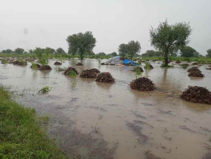 सिद्धमुख में डेढ घंटे में 80 एमएम बारिश,रेलवे स्टेशन रोड सहित कई इलाकों में दो-दो फीट तक पानी आया,खेत में कटी फसल बरसात में भीगी|चूरू,Churu - Dainik Bhaskar