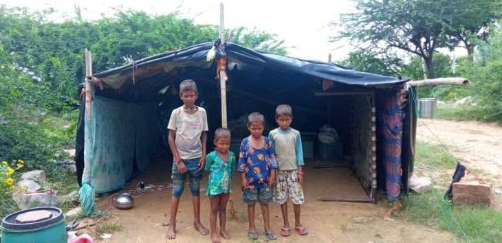 अलवर के खैरथल में बंजारा बस्ती के बच्चे गायब होने के बाद राष्ट्रीय बाल संरक्षण आयोग ने कलेक्टर व एसपी को नोटिस भेजा, 7 दिन में जवाब मांगा अलवर,Alwar - Dainik Bhaskar