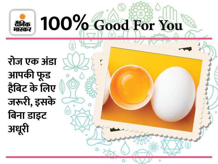 हर दिन खाएं अंडा, रहें बीमारियों से दूर|हेल्थ एंड फिटनेस,Health & Fitness - Dainik Bhaskar