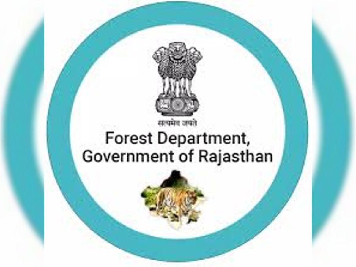 अब 13 नेशनल मेडलिस्ट को आदेश के बाद भी नौकरी नहीं दे रहा वन विभाग|जयपुर,Jaipur - Dainik Bhaskar