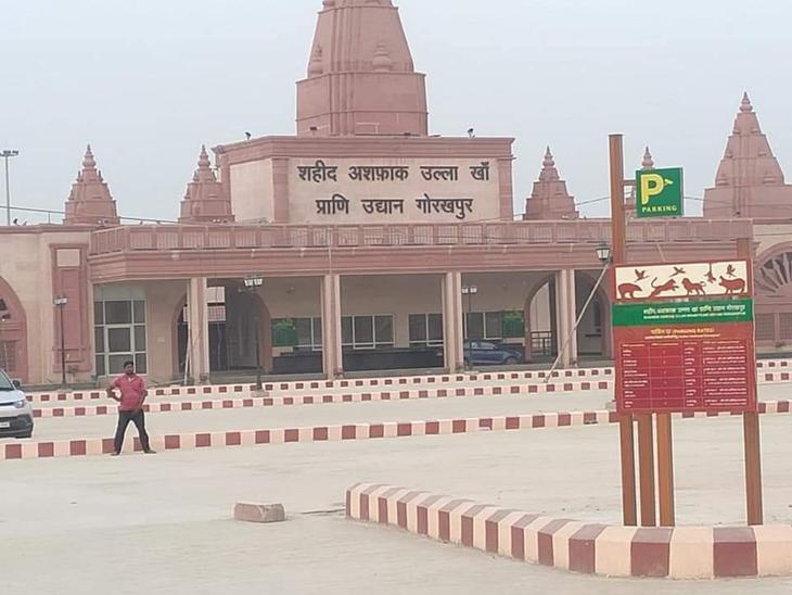 सीएम योगी के कार्यकाल में गोरखपुर को एक बड़ी सौगात चिड़ियाघर की भी मिली है।