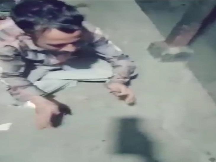 जीभ में और पूरे शरीर में जहर फैलने से हुई मौत; चंबा के संधवार गांव की घटना, सोशल मीडिया पर वीडियो वायरल|शिमला,Shimla - Dainik Bhaskar