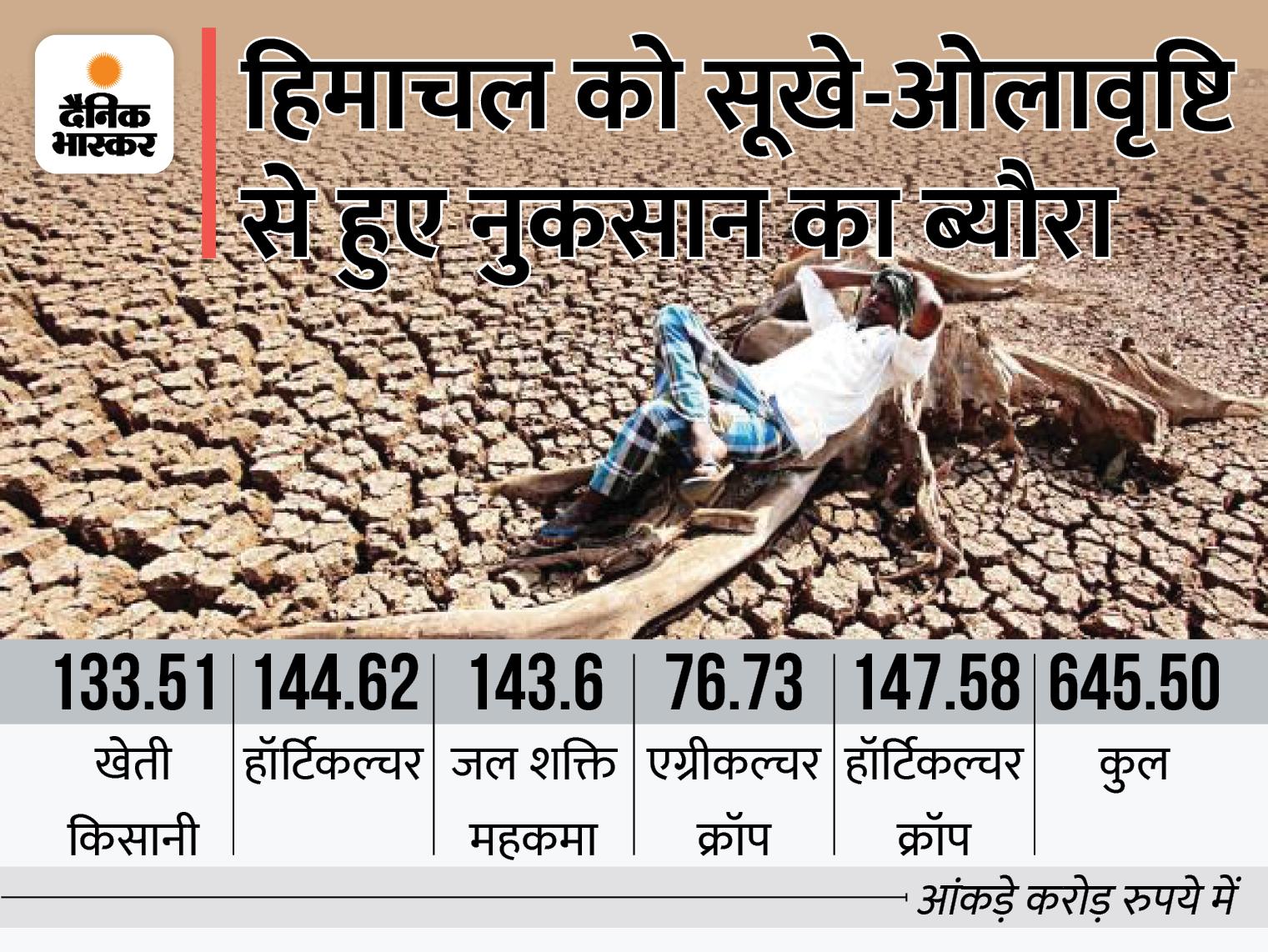 केंद्रीय कृषि मंत्रालय ने आपत्तियां जताते हुए लौटाई फाइल, लेकिन दोबारा भेजी जाएगी; राज्य को 645.50 करोड़ की हानि हुई है|शिमला,Shimla - Dainik Bhaskar