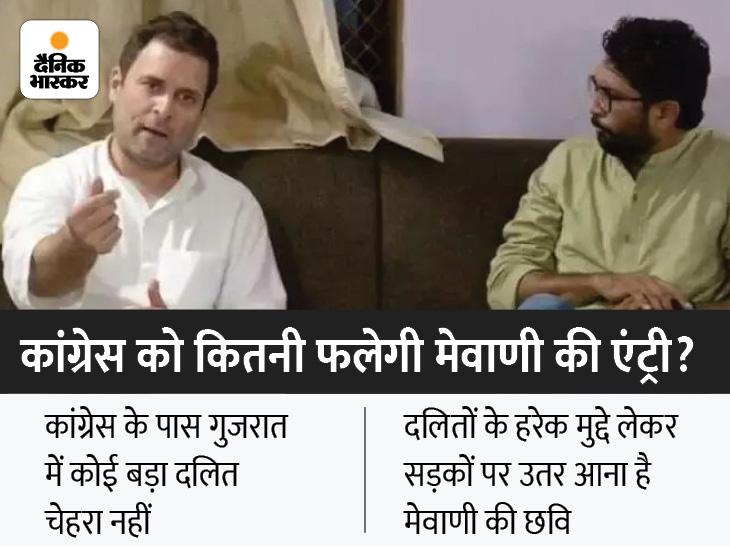 जिग्नेश मेवाणी और कांग्रेस क्यों चाहते हैं एक-दूसरे का साथ? गुजरात की राजनीति में दलित समुदाय का एक नया चेहरा पेश करना है दोनों की प्लानिंग|गुजरात,Gujarat - Dainik Bhaskar