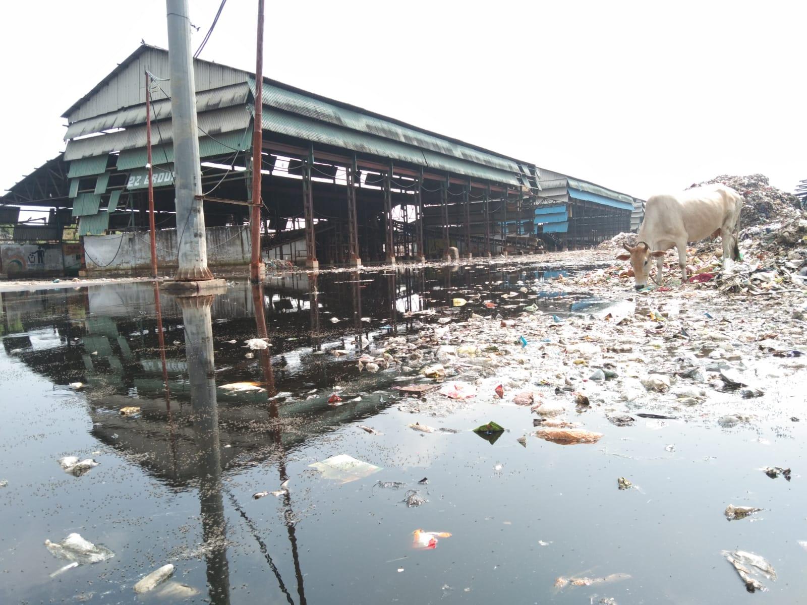 नगर निगम के कूड़ा निस्तारण प्लांट में बारिश का पानी भरने से 7 दिन से बंद है प्लांट, 15 लाख मीट्रिक टन कूड़ा पहले से है डंप कानपुर,Kanpur - Dainik Bhaskar
