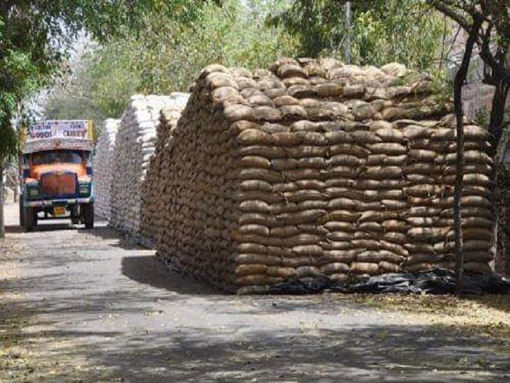 सस्ता राशन उपलब्ध कराने के लिए शुरू की गई है योजना। - Dainik Bhaskar