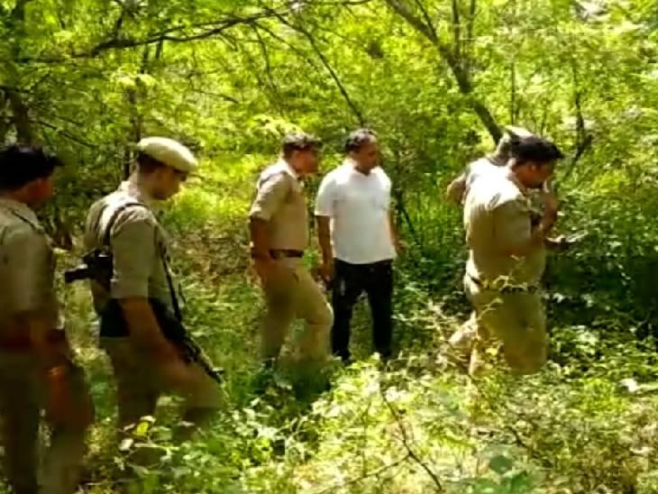 एक महीने पूर्व घर से निकल गया था युवक, जंगल में मिला नर कंकाल; पत्नी ने कहा- दिमागी रूप से थे बीमार|हमीरपुर,Hamirpur - Dainik Bhaskar