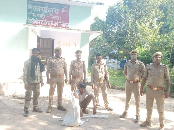 वन विभाग की टीम ने वन्य जीव के साथ पकड़ा, दो आरोपी फरार भी हुए; तीन पर दर्ज हुआ केस|पीलीभीत,Pilibheet - Dainik Bhaskar