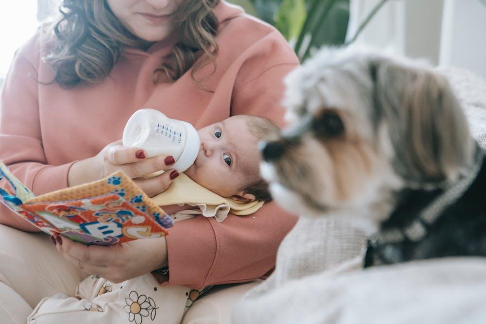 बोतल से दूध देते समय रखें ख्याल