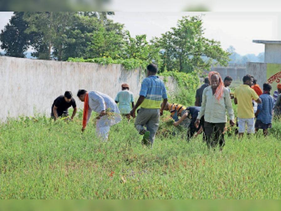 समर्पण अभियान के अंतिम दिन सफाई करते भाजपाई। - Dainik Bhaskar