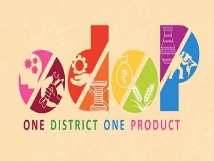 सभी 22 जिलों से कृषि-बागवानी और दूध-पोल्ट्री क्षेत्र से संबंधित उत्पाद शामिल; रोहतक में कई फलों को मिलेगा बढ़ावा|रोहतक,Rohtak - Dainik Bhaskar
