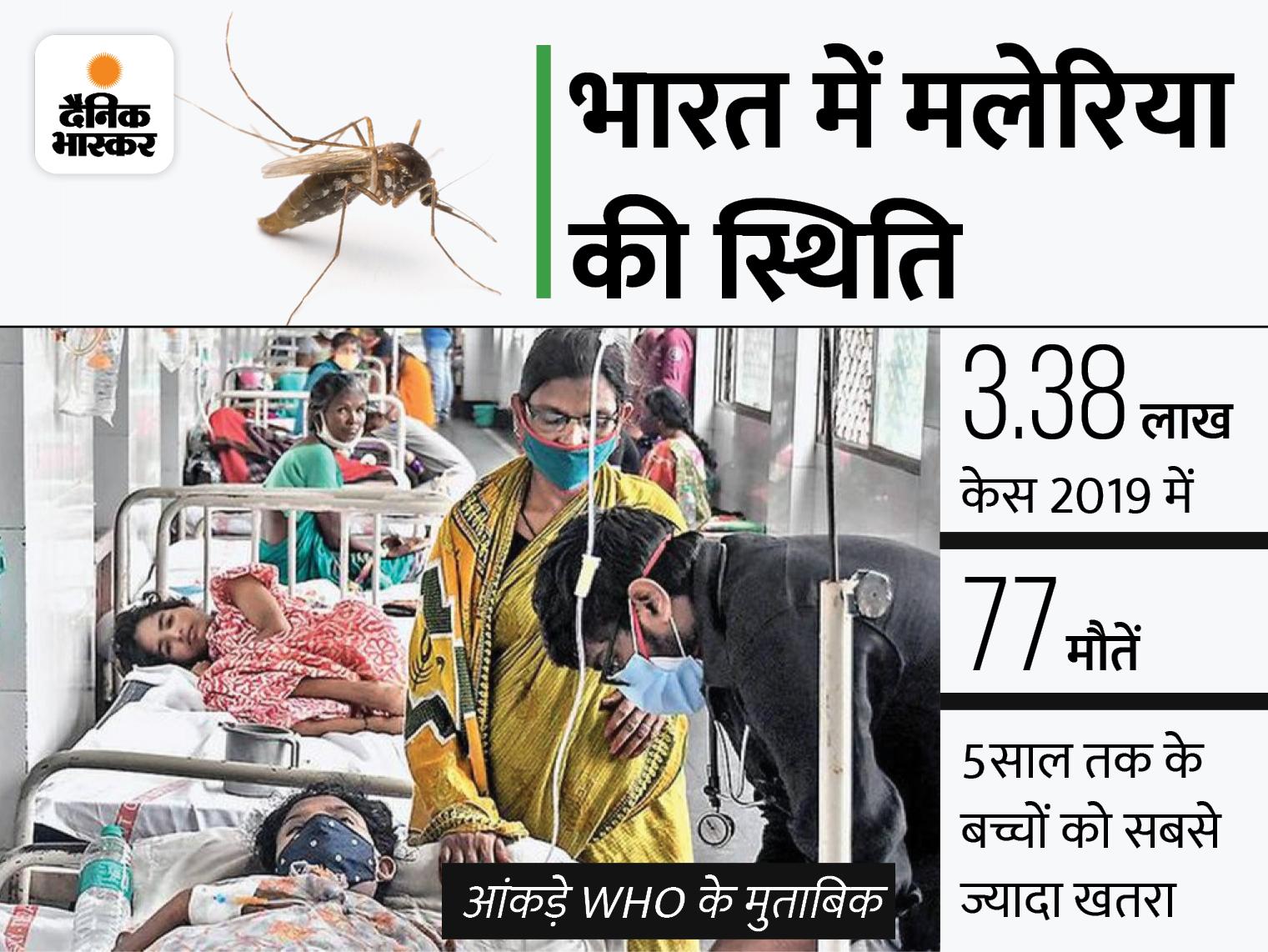 WHO ने मलेरिया की पहली वैक्सीन को मंजूरी दी, अफ्रीकी देशों से होगी शुरुआत; भारत में हर साल 3 लाख से ज्यादा केस आ रहे विदेश,International - Dainik Bhaskar