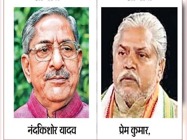 बिहार में मंत्री बनने से चूके नंदकिशोर यादव और प्रेम कुमार भाजपा राष्ट्रीय कार्यकारिणी में शामिल, पूर्व केन्द्रीय मंत्री रविशंकर प्रसाद भी शामिल|बिहार,Bihar - Dainik Bhaskar