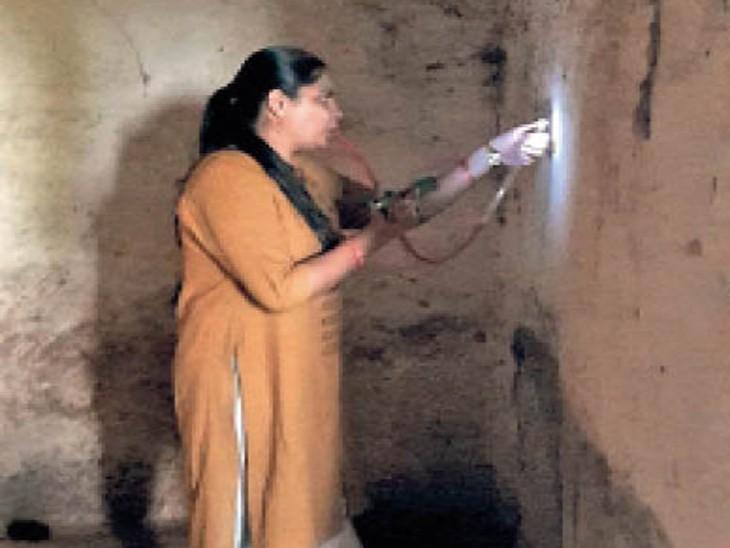 मच्छरों को इस तरह पकड़ रहे। - Dainik Bhaskar