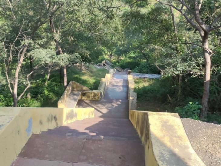 बाला किला जंगल में मंदिर जाने का रास्ता।