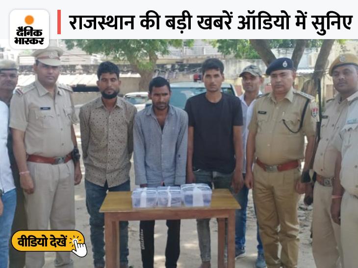 भरतपुर में गो तस्करों ने पुलिस पर की फायरिंग, राजस्थान हाईकोर्ट को मिलेंगे 5 जज|राजस्थान,Rajasthan - Dainik Bhaskar