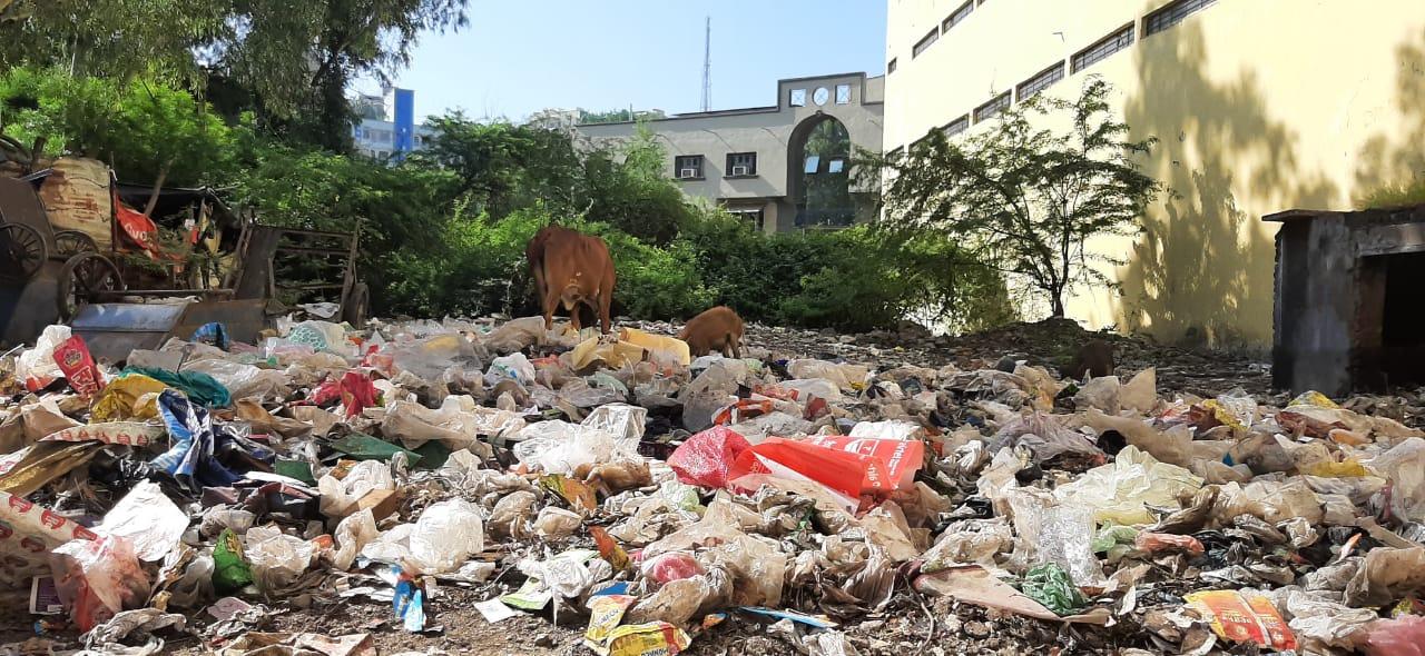 पोस्ट ऑफिस के पास खाली प्लॉट में पड़ा कचरा। - Dainik Bhaskar