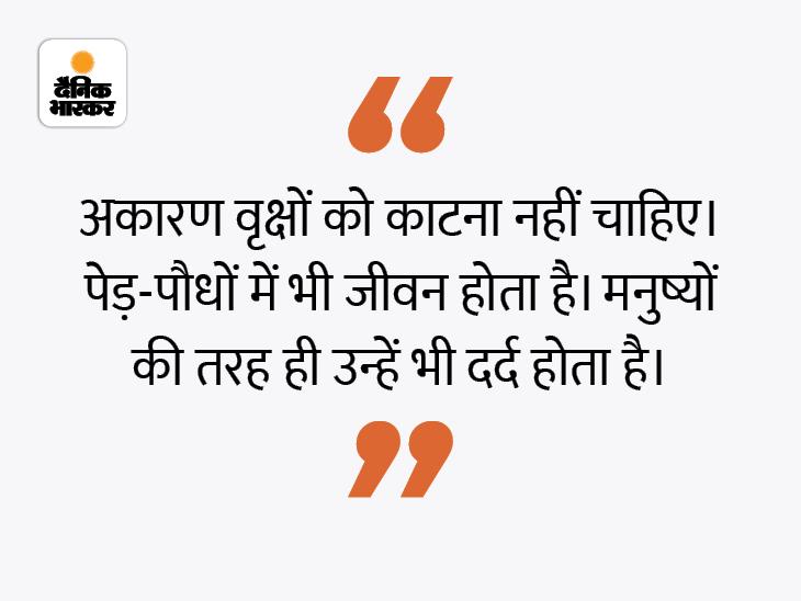 ध्यान रखें जितने प्राण इंसानों में होते हैं, उतने ही पेड़-पौधों में भी हैं|धर्म,Dharm - Dainik Bhaskar