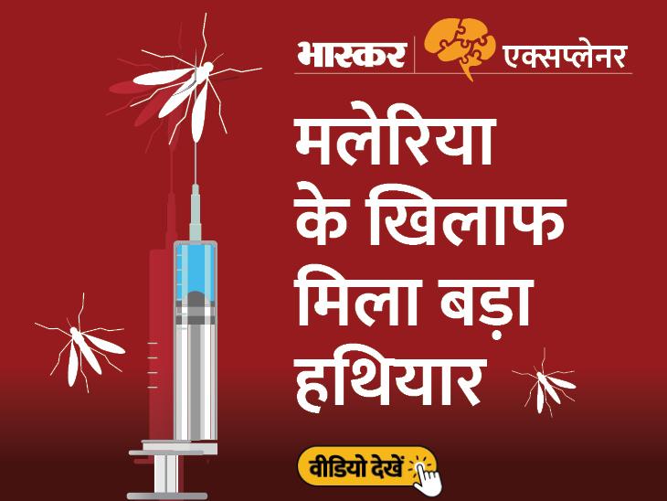 मलेरिया से मौतों को कम करेगा मॉस्किरिक्स; सिर्फ 30% एफिकेसी वाली इस वैक्सीन को क्यों बताया जा रहा है चमत्कारिक, जानिए सब कुछ|एक्सप्लेनर,Explainer - Dainik Bhaskar
