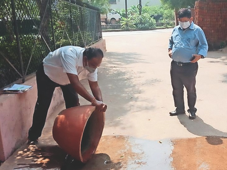 ग्वालियर जिले में डेंगू पीड़ितों की संख्या 442 पर पहुंची। - Dainik Bhaskar